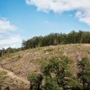 DSC7872-colline-deforestationtif