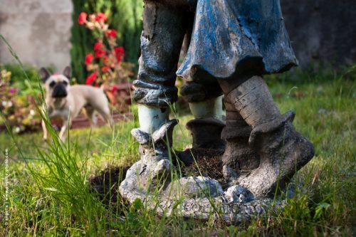 photo ©angelle danse statue chien étonnement jardin kitch vie quotidienne décoration improbable