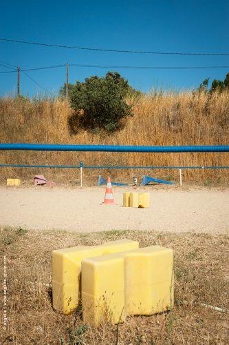 photo ©angelle carrière cheval plot couleur bleu sud géométrique cone soleil