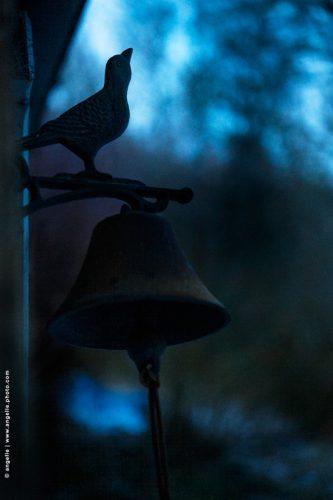 photo © angelle oiseau soirée nuit bleu cloche poésie rendez vous crépuscule ouvrage
