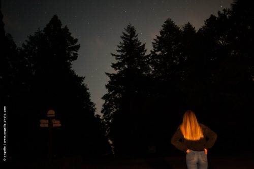 photo© angelle nuit foret fille cheveux or ciel etoiles rond point sapin attendre regarder