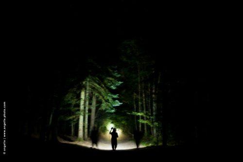 photo © angelle nuit foret mystère lumiere lampe de poche paysage flou mirage magie