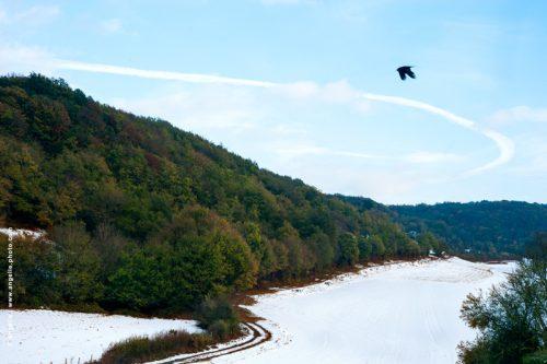 photo © angelle campagne chemin virage corneille oiseau vol foret vallon vallée neige hivers automne