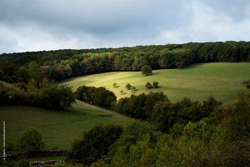 photo © angelle paysage bondieuse lumiere pré campagne espace vallee