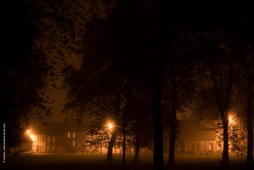 photo © angelle brume village nuit éclairage public arbre parc Nièvre bourgogne myope