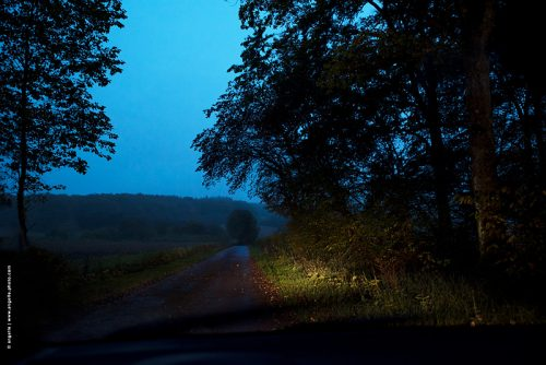 photo © angelle route nuit cessy foret voyage campagne