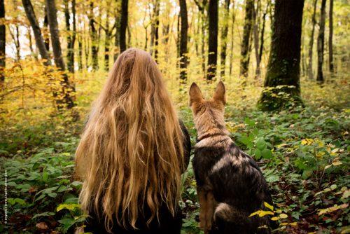 photo © angelle foret cheveux chien fille automne de dos mystère