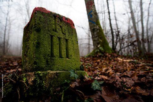 photo © angelle borne de parcelle pierre repéré foret hiver sol marque