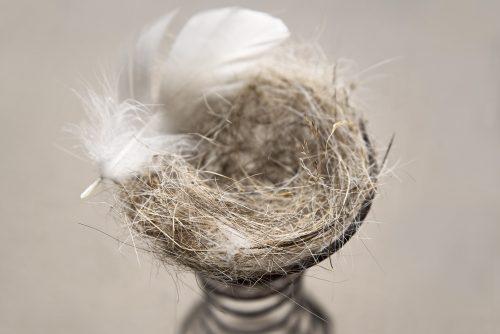 photo © angelle plume nid douceur poil de chevaux ressort surealiste installation jeux