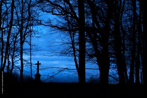 photo © angelle crépuscule croix foret vision douceur tristesse ciel
