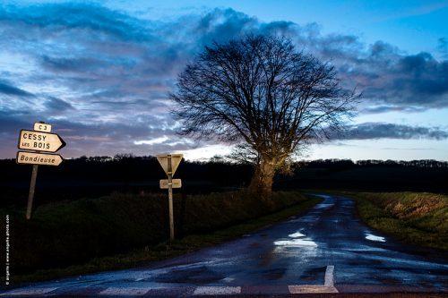 photo © angelle petite route coder le passage arbre crépuscule village prés isolement beauté
