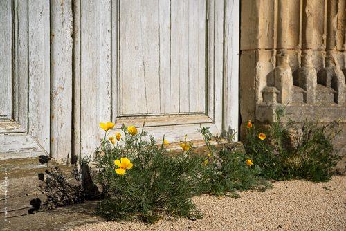 photo © angelle fleur porte d'église village confinement obstruction légère