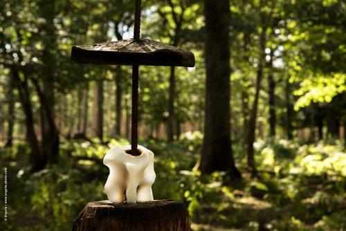 photo © angelle pierre a sel cerfs foret dent installation étrange été insolite
