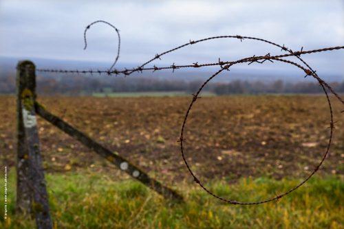 photo © angelle champs panorama labour bordure fil de fer étrange mystère