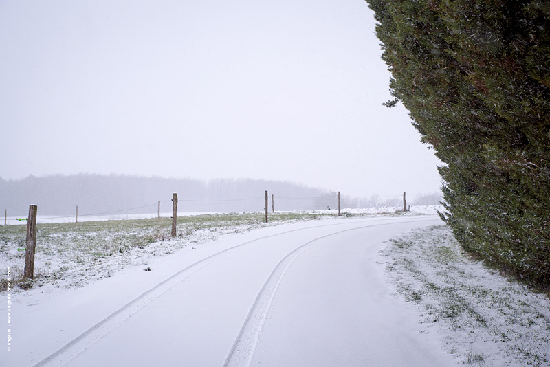 photo © angelle prés route cloture haies neige trace voiture solitude etrange virage