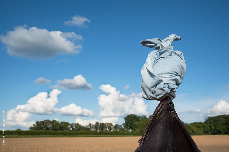 photo ©angelle epouventail chmaps agriculture tete lapin nuage printemps horizon paysage